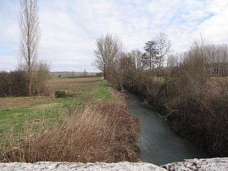Barguelonne river in France