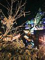La Petite Venise de Colmar la nuit à Noël.jpg