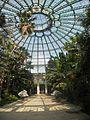 Laika ac Royal Greenhouses of Laeken (6317148180).jpg