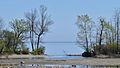 Lake Ontario - Mississauga, Ontario.jpg