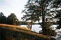 Lake wojnowo.jpg