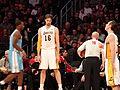 Lakers vs Nuggets 2013-01-06 (23).JPG