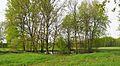 Langebrueck Quellteich.jpg
