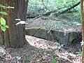 Langenfeld Schwanenmühle 0028.jpg