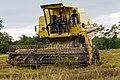 Langkawi Malaysia Rice-Harvesting-08.jpg