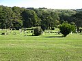 Large cemetery near Buckland - geograph.org.uk - 1654667.jpg