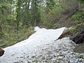 Late May snow in the trail - panoramio.jpg