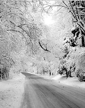 Linn Run State Park - A snowy scene at Linn Run State Park