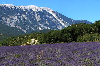 Provence Historical province in Provence-Alpes-Côte dAzur, France