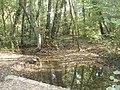 Le Turitin (ruisseau) à Villefontaine.jpg
