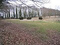 Leafy corner - geograph.org.uk - 1746902.jpg