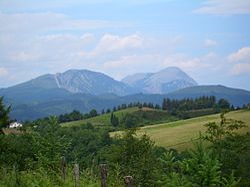 In the hills south of Leintz Gatzaga