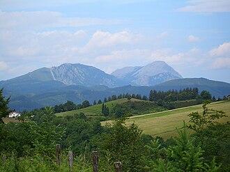 Leintz Gatzaga - Image: Leintz woodlands 4593