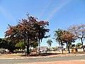 Leste Vila Nova, Goiânia - GO, Brazil - panoramio (3).jpg