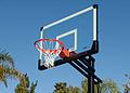 Lifetime Elite Basketball hoop.jpg