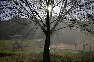 A plena luz del dia 01 - 3 6