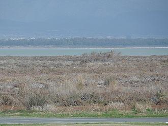 Limassol Salt Lake - Image: Limassol Salt Lake 1