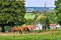 Limburge uitzichten.jpg