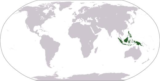 Kepulauan Melayu Wikiwand Peta Dunia Menunjukkan Kedudukan Pulau Irian Tidak