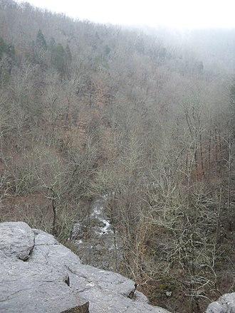 Lost Cove, Tennessee - Image: Lost Cove Cave Creek From Above