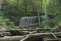 Lower Tews Falls - panoramio (1).jpg