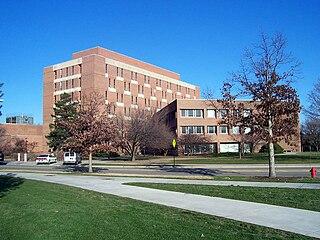 Michigan State University academics