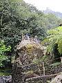 Madeira em Abril de 2011 IMG 2268 (5665176862).jpg