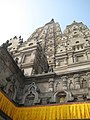 Mahabodhi Temple - IMG 6515.jpg