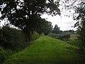 Manicured Green lane - geograph.org.uk - 999410.jpg