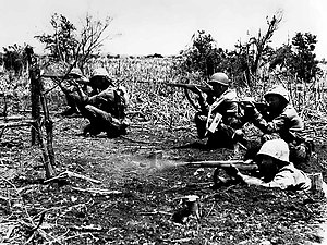 Battle of Tinian - Marines mopping up Tinian Island