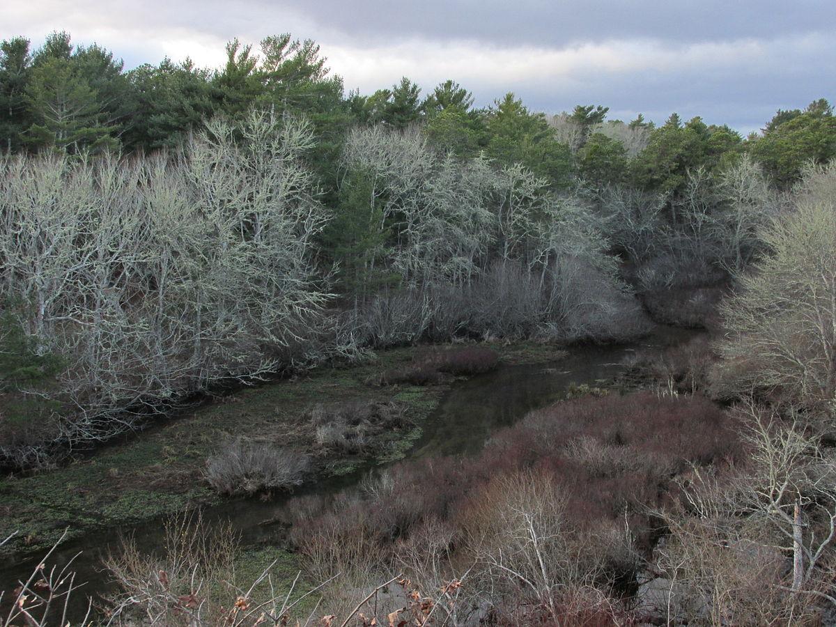 mashpee river reservation