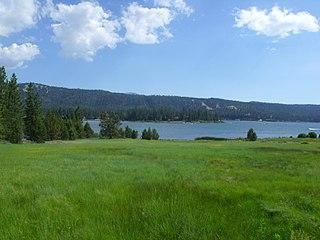 Wet meadow type of wetland