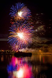 Melaleuca Freedom Celebration 2014