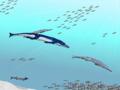 Metriorhynchus & Geosaurus & Aspidorhynchus & Pholidophorus.png