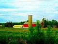 Meyer's Farm Market - panoramio.jpg