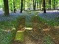 Micheldever Wood - geograph.org.uk - 808457.jpg