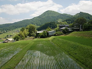 Mikusa mountain and terrace field 01.JPG