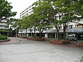 Minamigoyo - panoramio (32).jpg