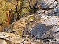 Molino Basin Waterfall - Flickr - treegrow (3).jpg