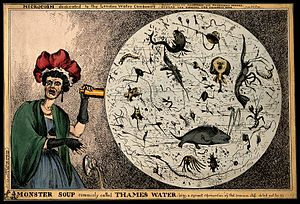 Water quality - Satirical cartoon by William Heath, showing a woman observing monsters in a drop of London water (at the time of the Commission on the London Water Supply report, 1828)