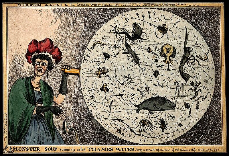 La soupe aux monstres dans l'eau de la Tamise (1828).