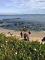 Monterey Bay 7 2017-11-14.jpg