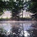 Moorbad Gmös - Teich mit Nebel.jpg