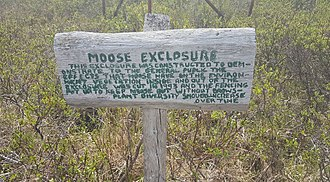 Browsing (herbivory) - Sign at long term moose exclosure experiment, Homer, Alaska