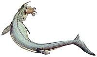 Mosasaurus 21copy.jpg