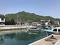 Mount Kurotakiyama from pier of Tadanoumi Port.jpg