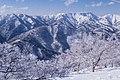 Mount Naeba (8528371712).jpg