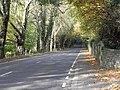 Moyallon Road near Gilford - geograph.org.uk - 1564325.jpg