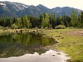 Mt. Aix reflected in Bumping Lake (25c31305c80d4608bcfd1a67b10fd903).JPG