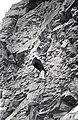 Mustjala pank. Siluri klint 74 (01).jpg